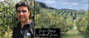 Sergio GOMEZ SERVICIO